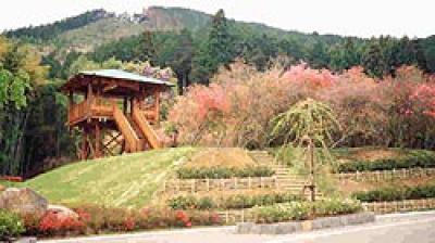 西山つつじ公園
